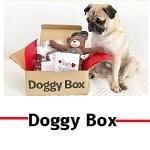 ドギーボックス(Doggy Box)クーポン